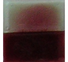 ESMALTE P/FLOAT BORDO (100GR)