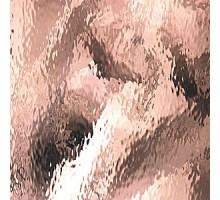 CHAMPAGNE ROSADO WATERGLASS 20X28 CM