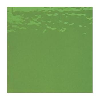 http://www.veahcolor.com.ar/1797-thickbox/flosing-verde-1-opalescente-15x20-cm.jpg