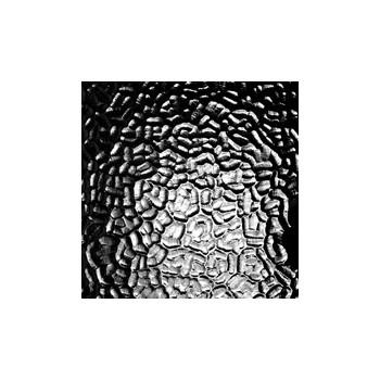 http://www.veahcolor.com.ar/2489-thickbox/artico-transparente-20x30-cm.jpg