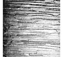COTSWOLD TRANSPARENTE 20X30 CM