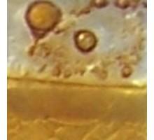 ESMALTE P/FLOAT CARAMELO (25 GR)
