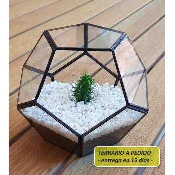 http://www.veahcolor.com.ar/5819-thickbox/terrario-4a-de-14-x-112-cm-a-pedido.jpg