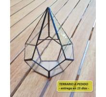 Terrario 1a De 13,5 X 18 Cm A Pedido