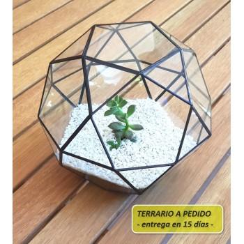 http://www.veahcolor.com.ar/5830-thickbox/terrario-2a-de-193-x-167-cm-a-pedido.jpg