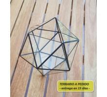 Terrario 7c De 26 X 21,6 Cm A Pedido