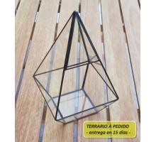 Terrario 3a De 10,8 X 20 Cm A Pedido