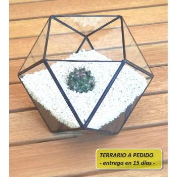 http://www.veahcolor.com.ar/5845-thickbox/terrario-9b-de-20-x-145-cm-a-pedido.jpg