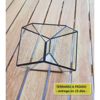 http://www.veahcolor.com.ar/5857-thickbox/terrario-10a-de-205-x-135-cm-a-pedido.jpg