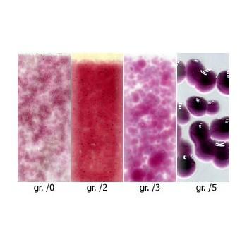 http://www.veahcolor.com.ar/764-thickbox/polvo-optul-opal-rubi-de-oro-p-float-50gr.jpg