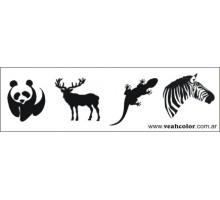 CALCO ANIMALES